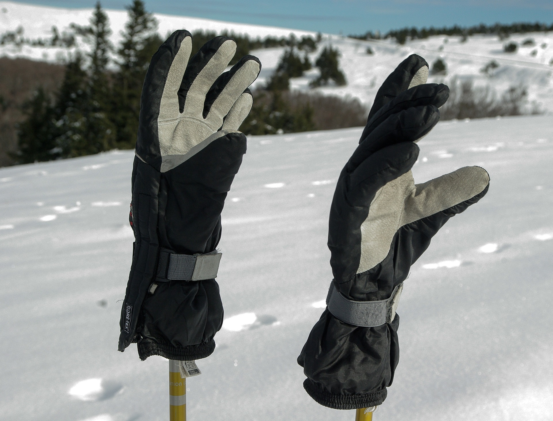 Ski Gloves: Know Everything About Them