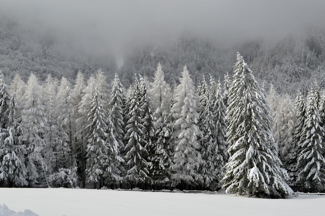 An Introduction To Ski De Fond